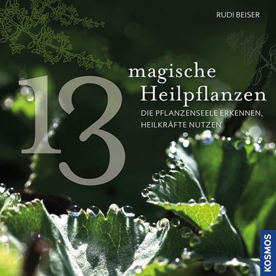 13 magische Heilpflanzen. Die Pflanzenseele erkennen, Heilkräfte nutzen.