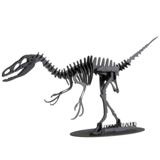 3D-Papiermodell »Dromaeosaurus«.