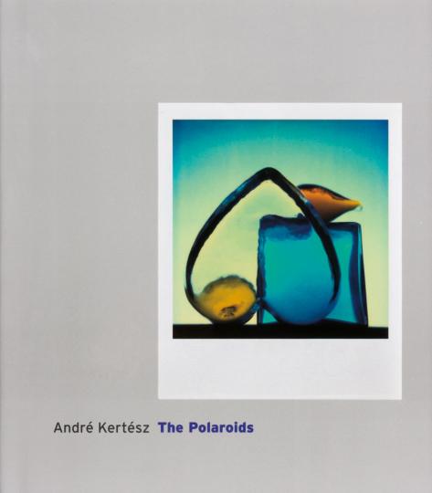 André Kertesz. The Polaroids.