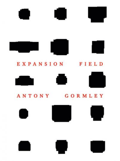 Antony Gormley. Expansion Field.