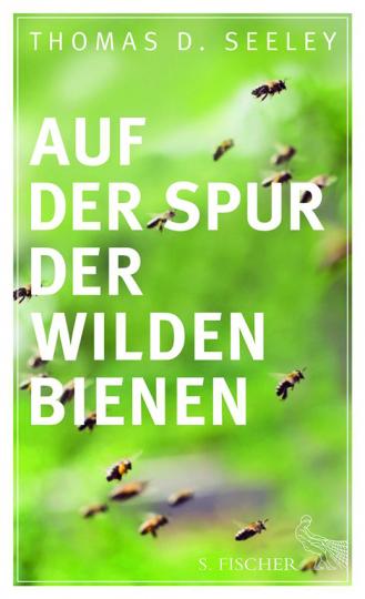 Auf der Spur der wilden Bienen.