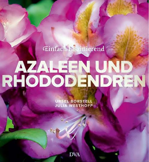 Azaleen und Rhododendren.