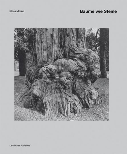 Bäume wie Steine. Fotografien von Klaus Merkel.