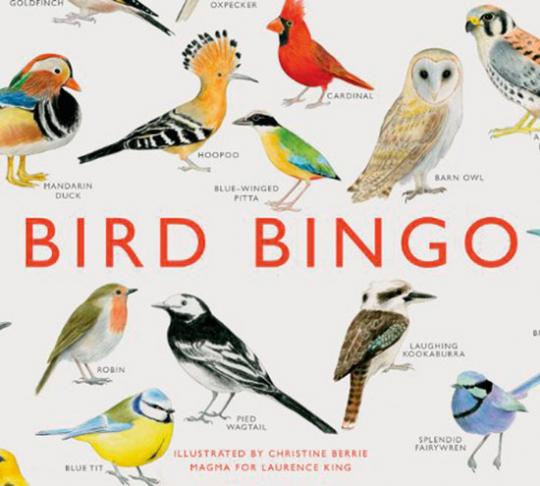 Bird Bingo. Vogel-Bingo.
