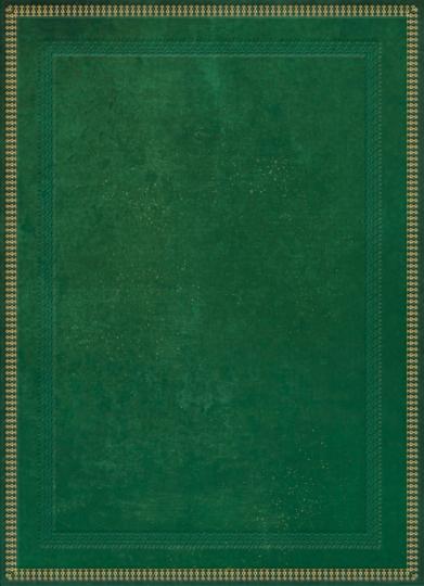 Blank Book grün, groß, liniert.