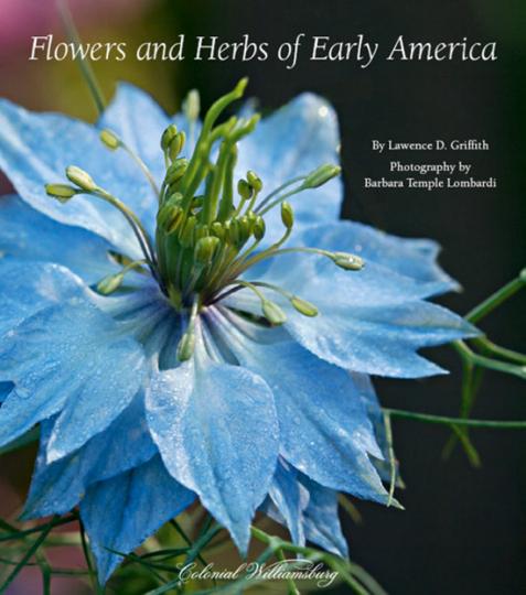 Blumen und Kräuter des Frühen Amerika.