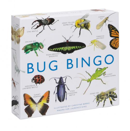 Bug Bingo. Insekten-Bingo.