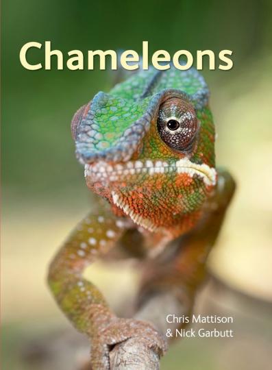 Chameleons.