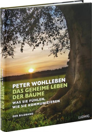Das geheime Leben der Bäume. Was sie fühlen, wie sie kommunizieren. Der Bildband. Mit dem vollständigen Text der Originalausgabe.