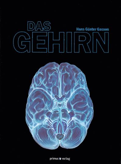 Das Gehirn.