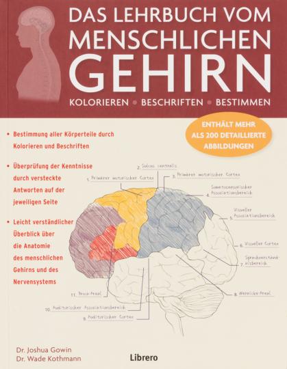 Das Lehrbuch vom menschlichen Gehirn. Ein Einblick in Gehirn und Nervensystem des Menschen.