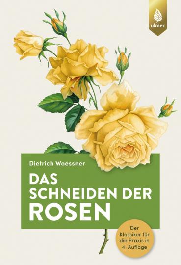 Das Schneiden der Rosen. Der Klassiker für die Praxis in 4. Auflage.