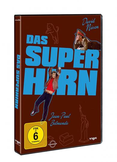 Das Superhirn DVD