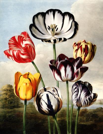 Das Viktorianische Zeitalter Englands. Victorian Britain 1837-1901. Design and the Decorative Arts.