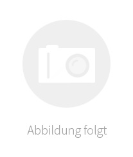 Der blau gestreifte Reiter. Gemälde des 19. Jahrhunderts.