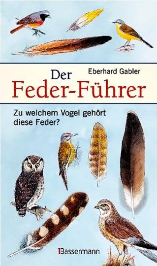 Der Feder-Führer. Zu welchem Vogel gehört diese Feder?