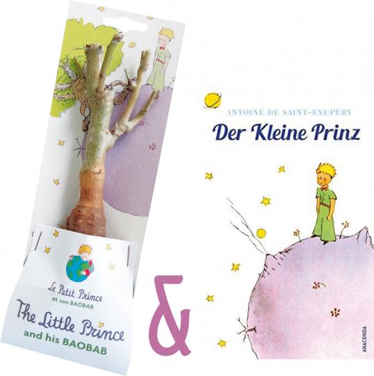 Der Kleine Prinz Buch und Affenbrotbaum Baobab im Set.