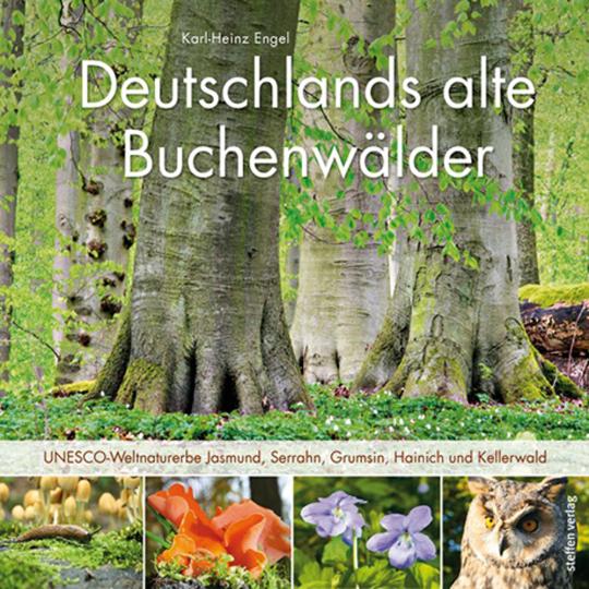 Deutschlands alte Buchenwälder. UNESCO-Weltnaturerbe Jasmund, Serrahn, Grumsin, Hainich und Kellerwald.