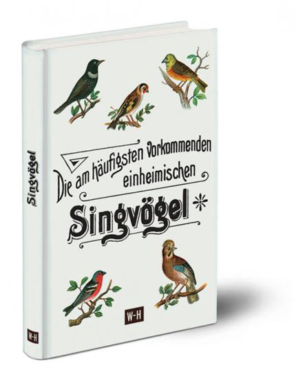 Die am häufigsten vorkommenden einheimischen Singvögel.