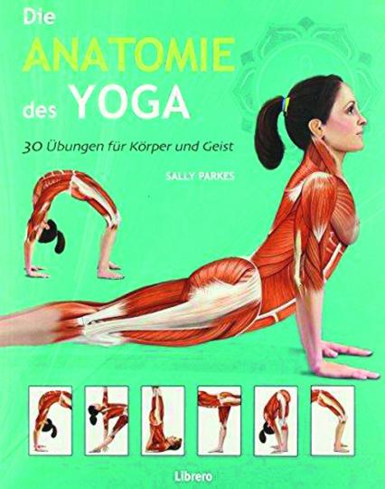 Die Anatomie des Yoga.