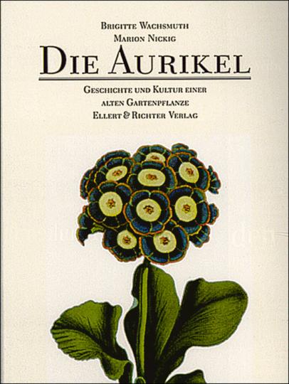 Die Aurikel - Geschichte und Kultur einer alten Gartenpflanze