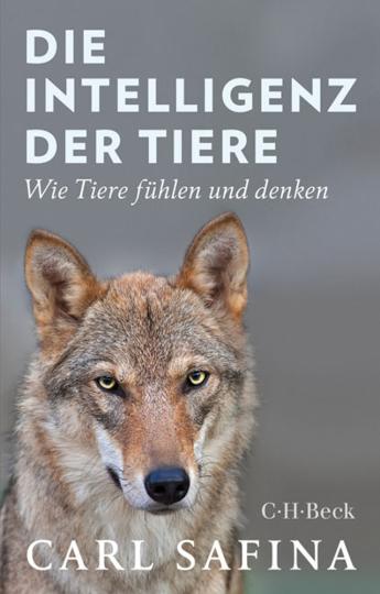 Die Intelligenz der Tiere. Wie Tiere fühlen und denken.