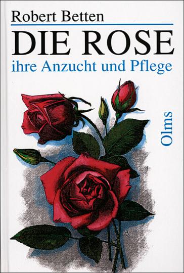 Die Rose - ihre Anzucht und Pflege