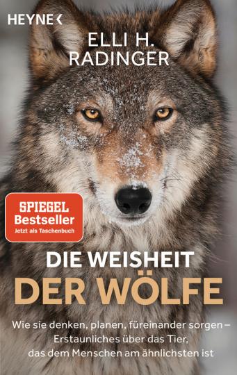 Die Weisheit der Wölfe. Wie sie denken, planen, füreinander sorgen. Erstaunliches über das Tier, das dem Menschen am ähnlichsten ist.