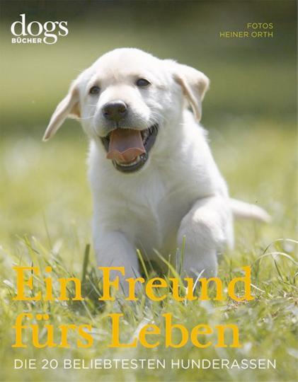 DOGS – Ein Freund fürs Leben: Die 20 beliebtesten Hunderassen