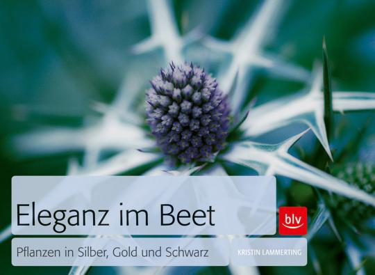 Eleganz im Beet. Pflanzen in Silber, Gold und Schwarz.