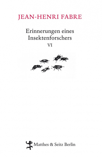 Erinnerungen eines Insektenforschers VI.
