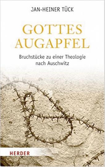 Gottes Augapfel - Bruchstücke zu einer Theologie nach Auschwitz