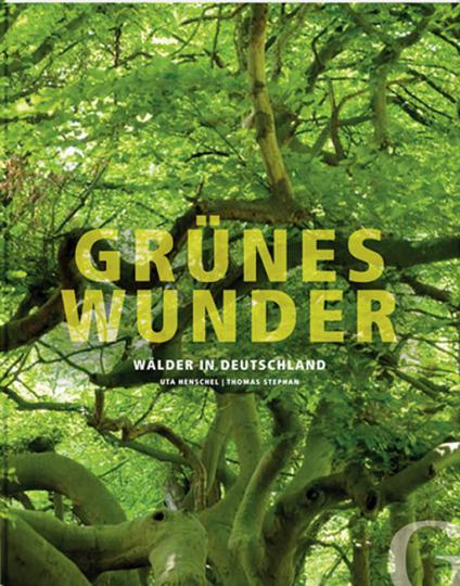 Grünes Wunder. Wälder in Deutschland.