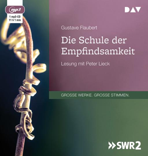 Gustave Flaubert. Die Schule der Empfindsamkeit. mp3-CD.