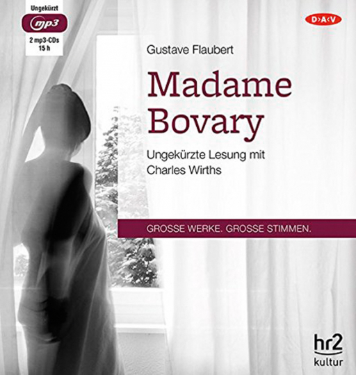 Gustave Flaubert. Madame Bovary. Hörbuch. 2 CDs.