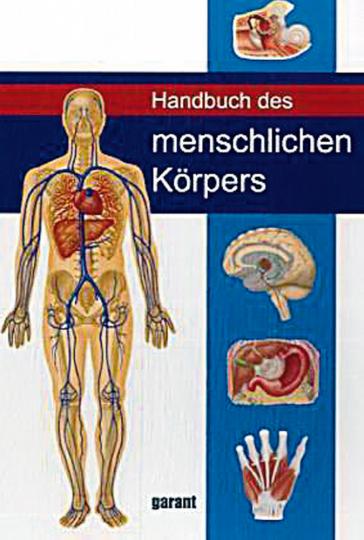 Handbuch des menschlichen Körpers