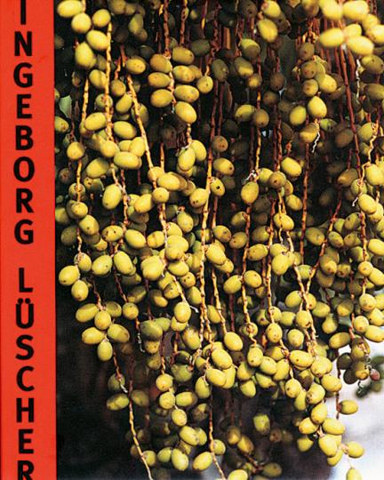 Ingeborg Lüscher. Skulptur - Fotographie - Installation
