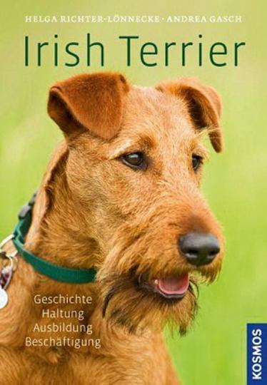 Irish Terrier. Geschichte, Haltung, Ausbildung, Beschäftigung.