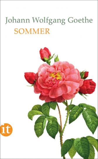 Johann Wolfgang Goethe. Sommer.