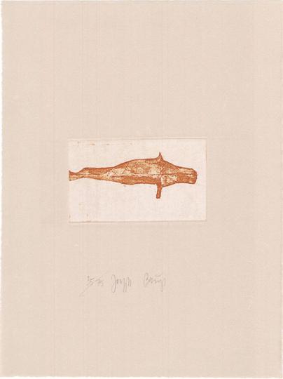 Joseph Beuys. »Zirkulationszeit: Robbe I«. Originalgrafik.