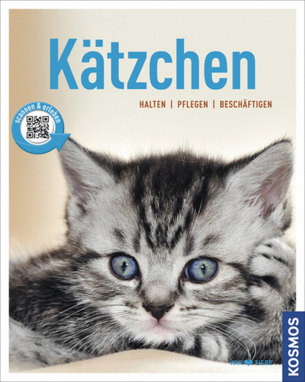 Kätzchen: halten - pflegen - beschäftigen.