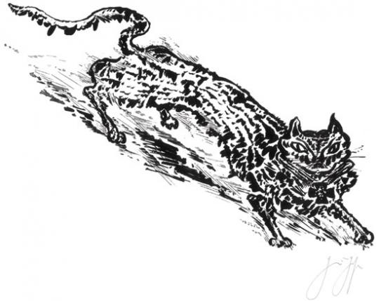 Katz und Maus. Original-Lithografie. Göttingen 2010.