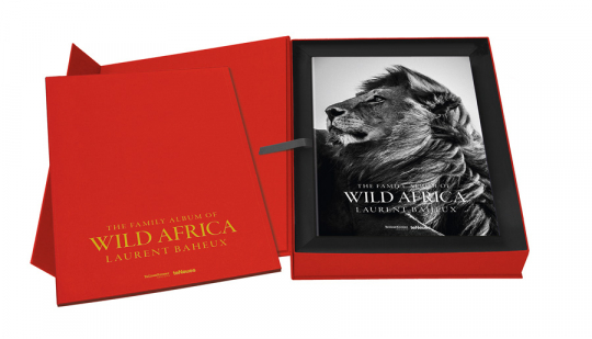 Laurent Baheux. The Family Album of Wild Africa. Collector's Edition mit Print »Flight over a Family of Elephants«.