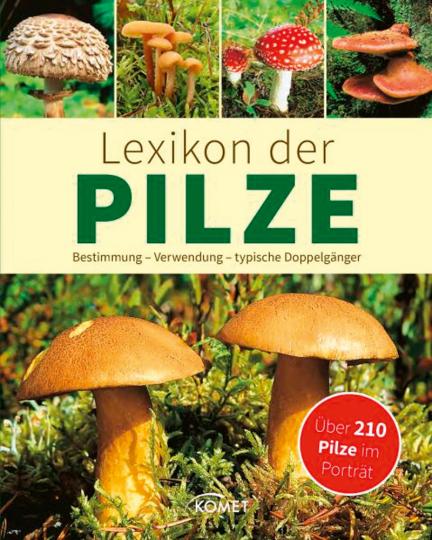 Lexikon der Pilze. Bestimmung, Verwendung, typische Doppelgänger. Über 230 Pilze im Porträt.