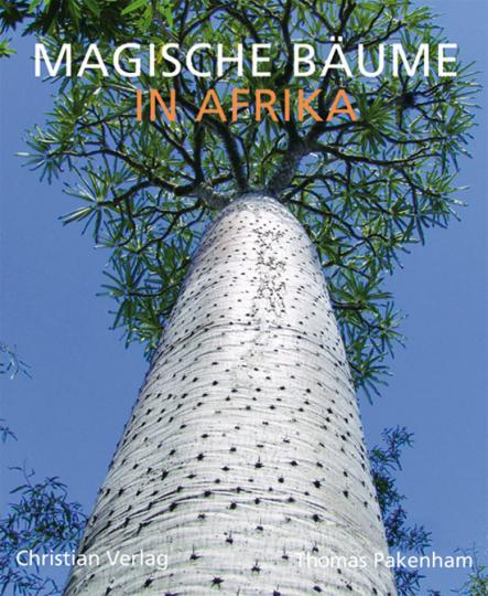 Magische Bäume in Afrika.