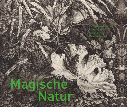 Magische Natur. Carl Wilhelm Kolbe d. Ä., Franz Gertsch, Simone Nieweg, Natascha Borowsky.