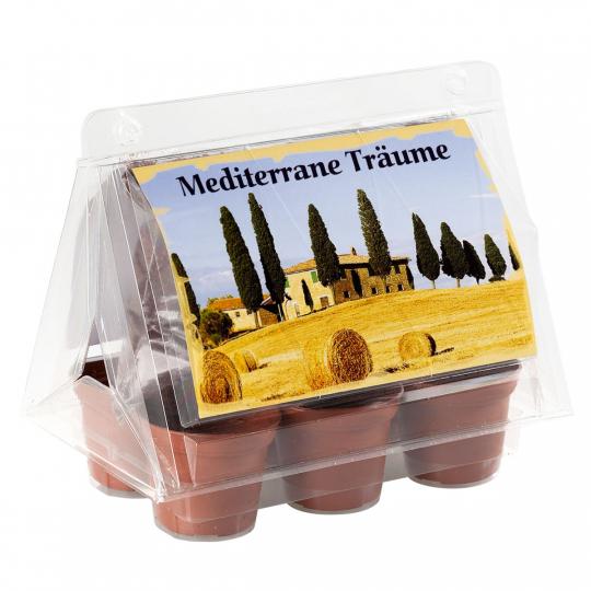 Mini-Gewächshaus »Mediterrane Träume«.
