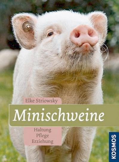 Minischweine - Haltung, Pflege, Erziehung
