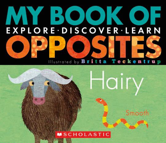 My Book of Opposites. Mein Buch der Gegensätze. Erforschen, entdecken, lernen.