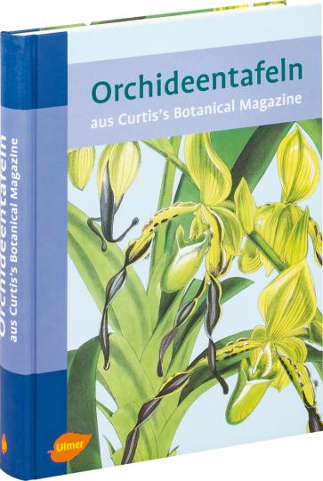 Orchideentafeln aus Curtis's Botanical Magazine.